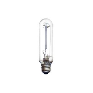 Лампа Іскра ДнаТ 100 Вт Е40