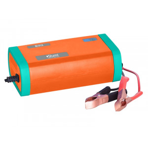 Зарядное устройство ВС12110 12В 30-100Ач STURM